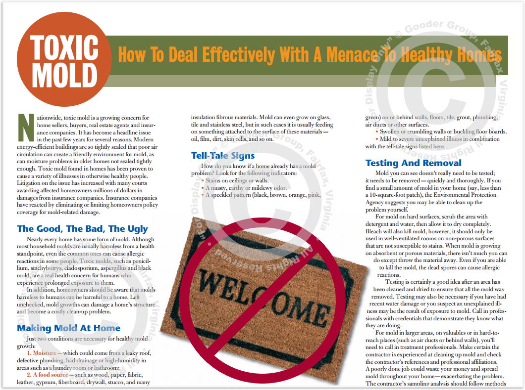 Toxic Mold Print Real Estate Brochure HomeActions Brochure Preview