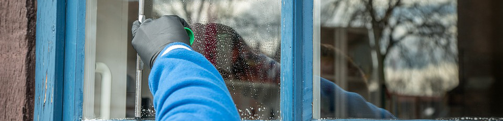 SURVEY: How often should you clean your windows?