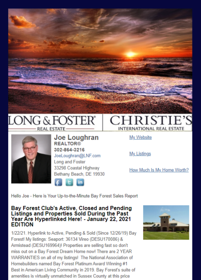 Real Estate Marketing Newsletter Example From An Agent At Long & Foster Real Estate Inc.
